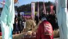[역사탐방]  삼척사람들의 문화와 몸짓- 삼척 기줄다리기,주민 천여 명이 전통 기줄다리기 시연